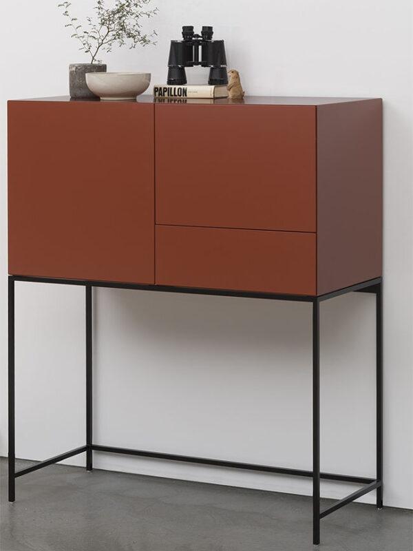 Pastoe Vision Cabinet