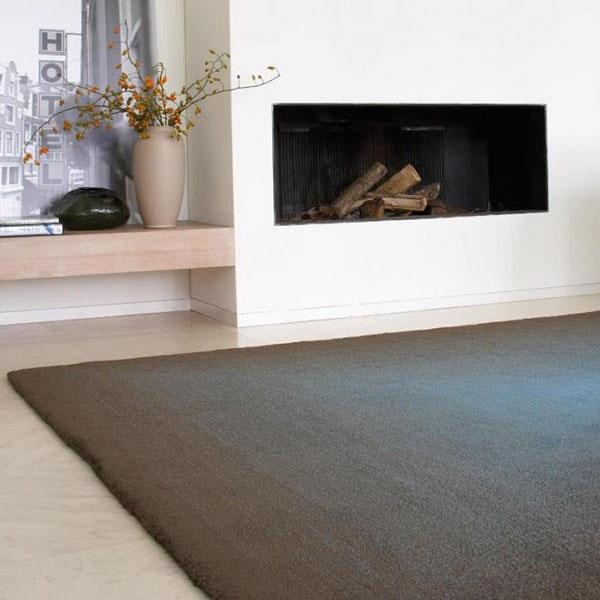 Carpet Sign tapijt Cameleon bij Robeerst Interieurs